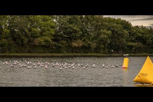 st helens tri (1 of 1)-5 sml